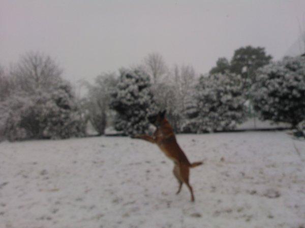 vive la neige....!!!!