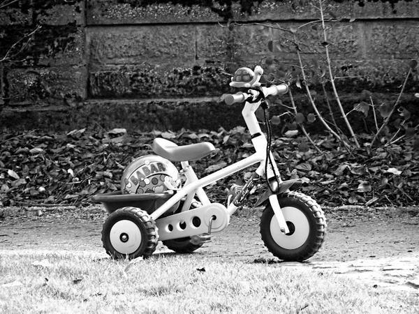 Au gré des vents sur mon tricycle jaune Dans les couloirs du métro je tourne Et le vent peut souffler lui et moi nous sommes Comme une flamme indestructible Autour du monde j'irai avec toi Si tu veux derrière moi en amazone Moi j'ai pas besoin de Harley-Davidson Sur mon tricycle jaune Sur mon tricycle jaune Sur mon tricycle jaune Viens je t'emmène Viens je t'emmène Sur mon tricycle jaune Quand la nuit tombe sur les autoroutes Que tous les gens sans poésie se marrent De me voir pédaler comme un galérien Sur mon tricycle jaune Moi je pense aux gens dans le fond des métros Qui s'enterrent dans leur propre tombe Quand au dessus des villes nous nous volons Sur les ailes du tricycle jaune Sur mon tricycle jaune Sur mon tricycle jaune Viens je t'emmène Viens je t'emmène Viens je t'emmène Sur mon tricycle jaune Quand l'apocalypse sonnera la fin Que le trafic sera bloqué au péage Y en aura un que tu verras passer Ce sera le tricycle jaune