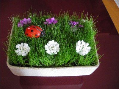 gazon fleuri florelly73 blog art floral. Black Bedroom Furniture Sets. Home Design Ideas