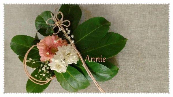 Merci Annie !