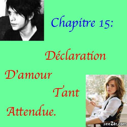 Chapitre 15 : Déclaration d'amour tant attendue.