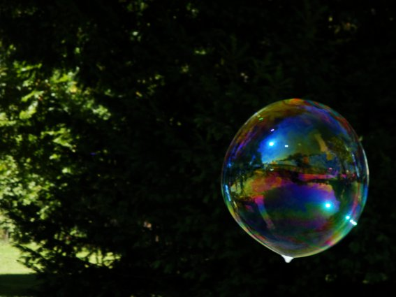 638. Welcome in my bubble