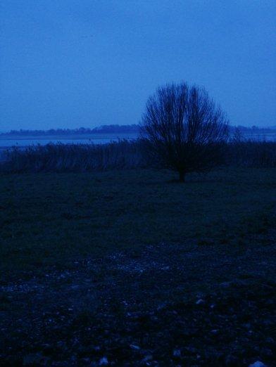 661. Le bleu de l'aube brumeuse