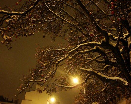 675. Poésie d'hiver