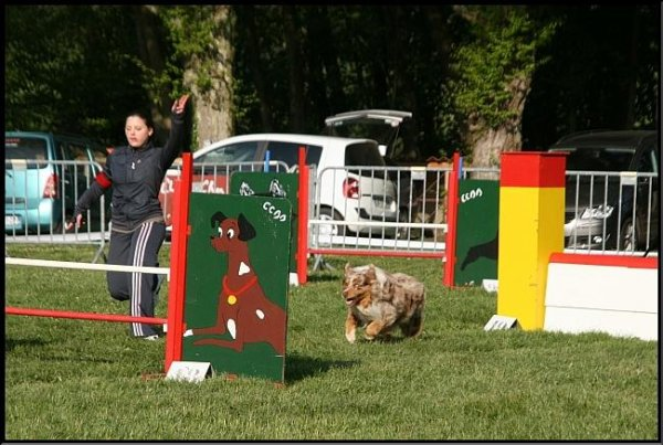 Concours Bourg en Bresse 17 avril 2011