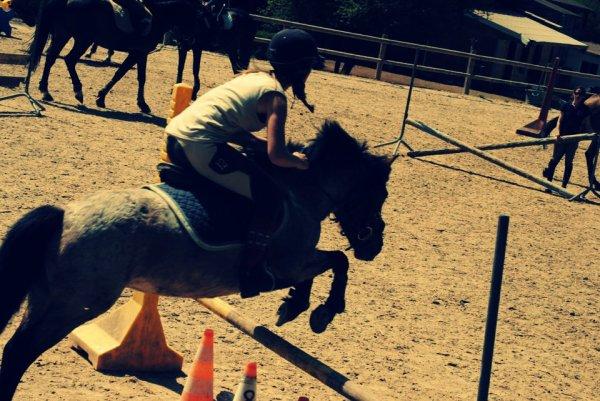 Il n'y a pas de secrets aussi intimes que ceux d'un cavalier et de son cheval. S ♥
