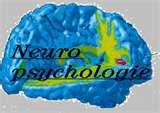 3 ) Les premiers signes de l'infirmité Motrice Cérébrale