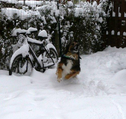 Il n'arrête pas de neiger