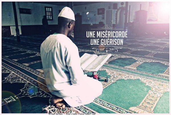 """""""Si Allah vous donne Son secours, nul ne peut vous vaincre. S'Il vous abandonne, qui donc après Lui vous donnera secours? C'est en Allah que les croyants doivent faire confiance."""" [Sourate 3 - Verset 160]"""