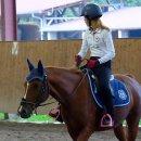 Photo de Seances-Equestres