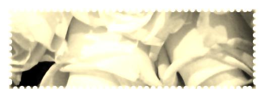 ❤      Mes One-Shots      ❤  Mise à Jour------------------------------------------------------------------------------------------------------------------Le 25/04/2020