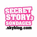 Photo de SecretStory3-Sondages