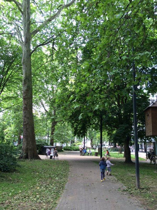 Slam du Sycomore - pour la sauvegarde du Parc Léopold à Namur