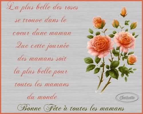 en ce dimanche 31 mai , je souhaite une bonne fête a toutes les maman de France et du monde