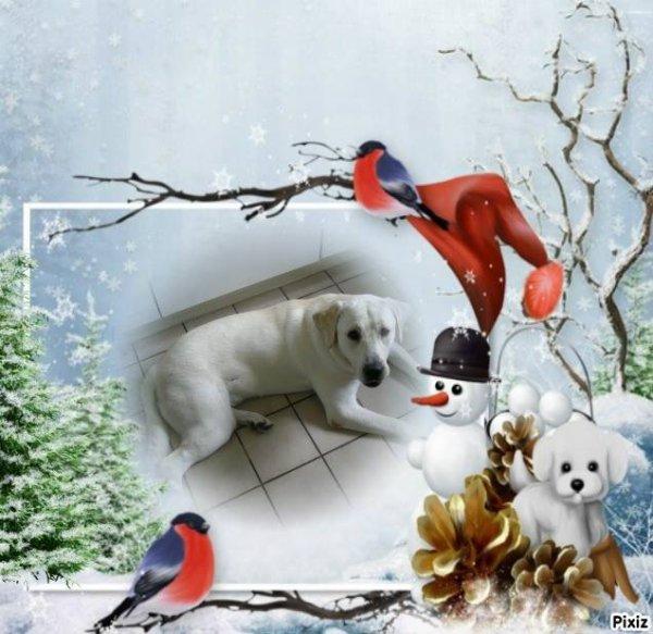 Bon weekend sous la neige a vous toutes et tous mes amies et amis  bisous
