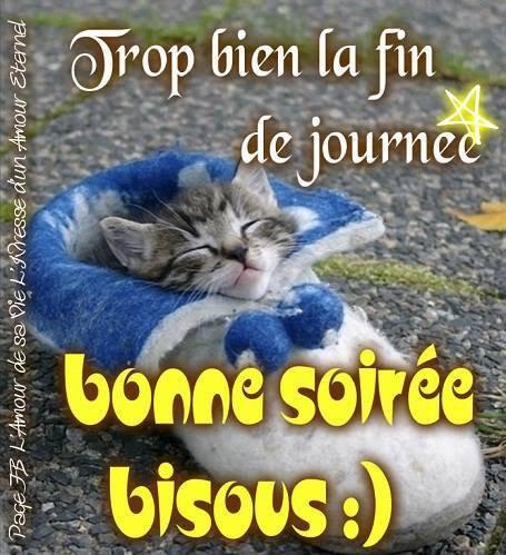 Bonne fin de journée a vous toutes et tous mes amies et amis bisous