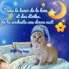 Bonne soirée a vous toutes et tous mes amies et amis bisous