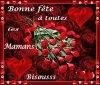 Bonne fête a toutes lesmamans de France et du monde et a toutes les mamans qui sont sur l'autre chemin