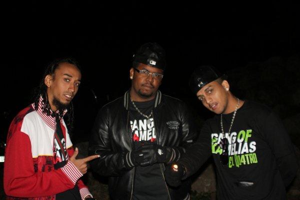 DMX LIVE 2 - RAVINE ST LEU - 16/07/2011