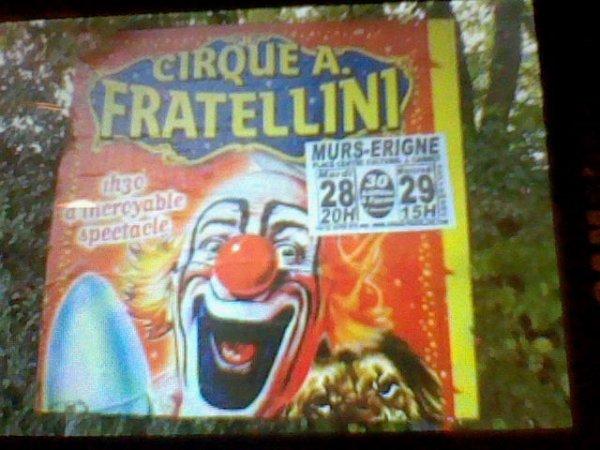 Affiche du cirque A. FRATELLINI en 2009