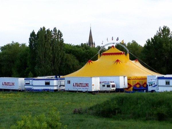Cirque A. FRATELLINI Challonnes/ Loire (49)