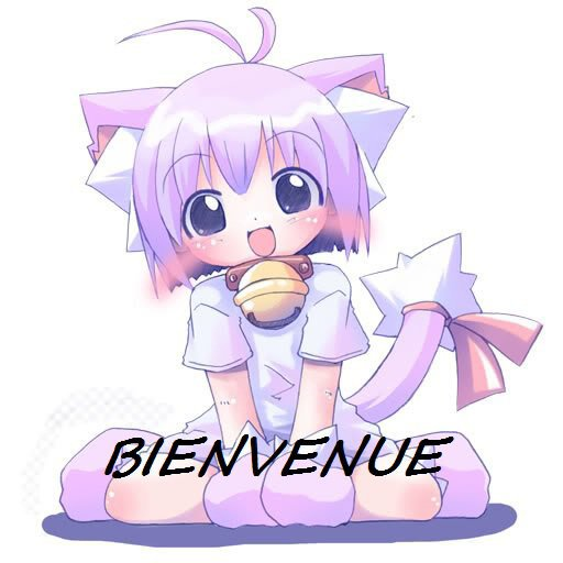 Bonjour tout le monde !!!