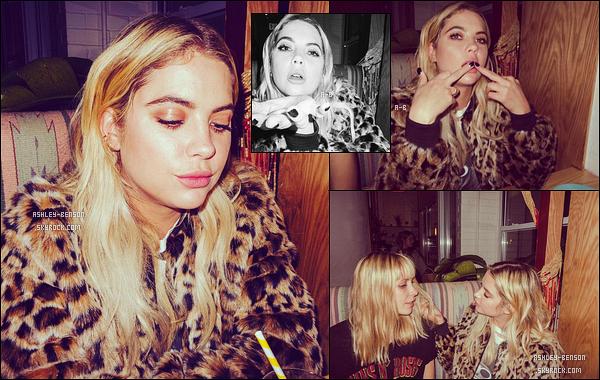 ✿ Découvrez un petit photoshoot qu'Ashley a réalisé en compagnie de Niko Gilis.
