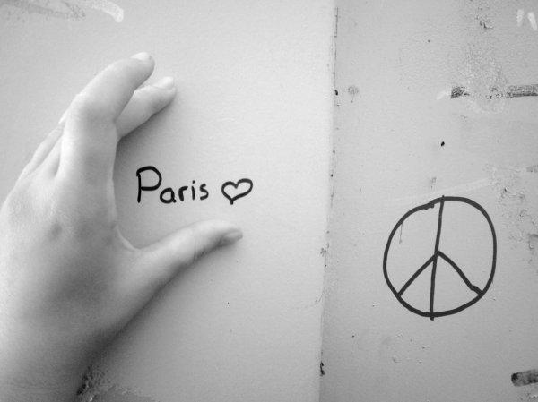 Paris Hilton everywhere !