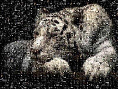 SLEEPING WHITE TIGER