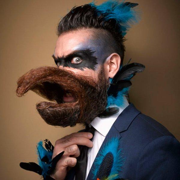 Championnat de Barbe et Moustache 2016 !