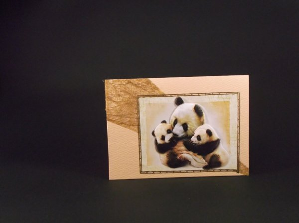 carte pandas