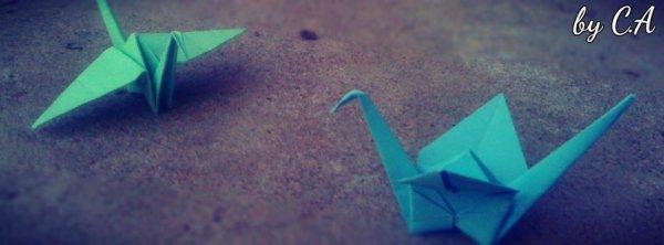 qui aime les origamis ?