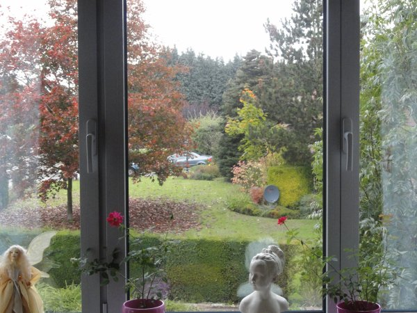 Vue de ma fen tre le jardin de mon voisin blog van for Vue de ma fenetre
