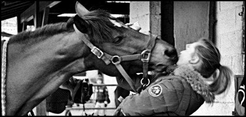 Etre aimé par un cheval ou par un autre animal doit nous remplir d'humilité et de reconnaissance, car nous ne le méritons pas.