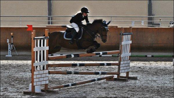 """"""" Toute progression en équitation est le fruit d'une remise en question du cavalier. """""""