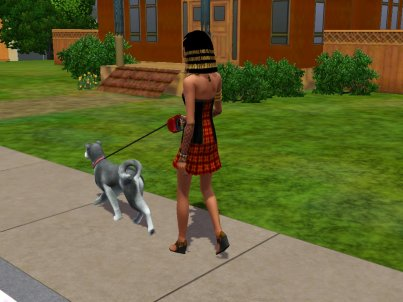 Sims3 animaux et cie