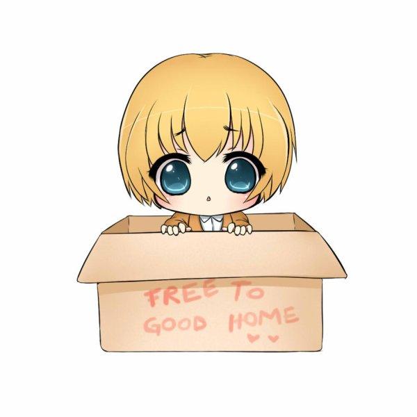 Adopt an Armin !