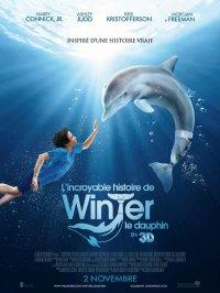 L'incroyable histoire de Winter le dauphin !