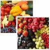 """Conseils BIO : POURQUOI """" 5 FRUITS ET LÉGUMES"""" ?"""