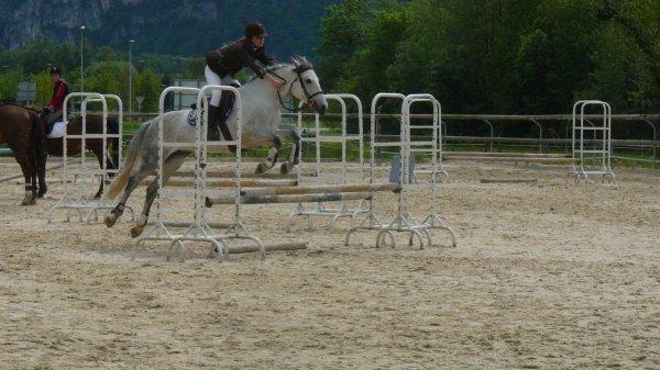 Concours de saut