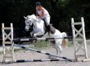 Photo de memory-horse