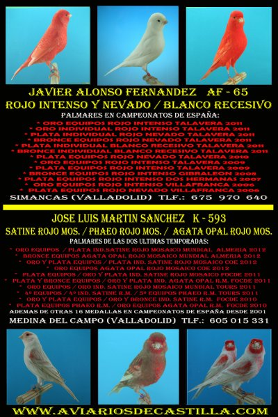 ANUNCIOS 2012