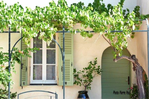 C'est pas ma maison , mais j'aime bien pour la proximité du raisin
