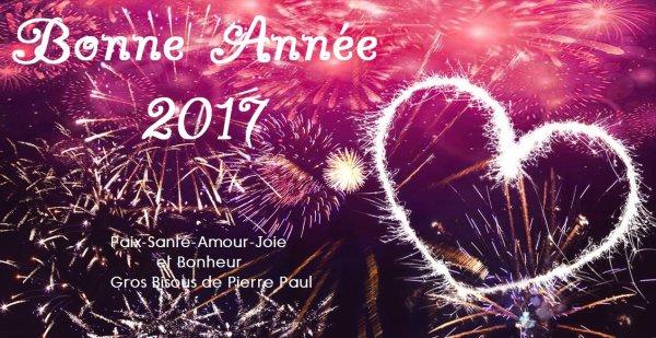 Famille - Amis - Amies Je vous souhaite une bonne et heureuse année 2017