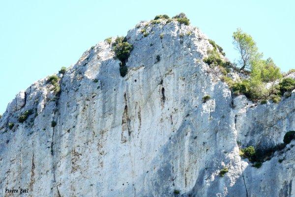 Nous sommes en Provence sur les terres de Mistral