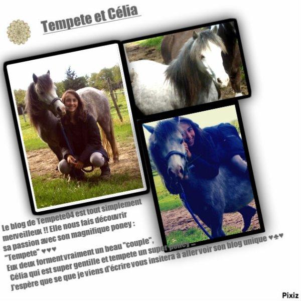 Tempete04 <3