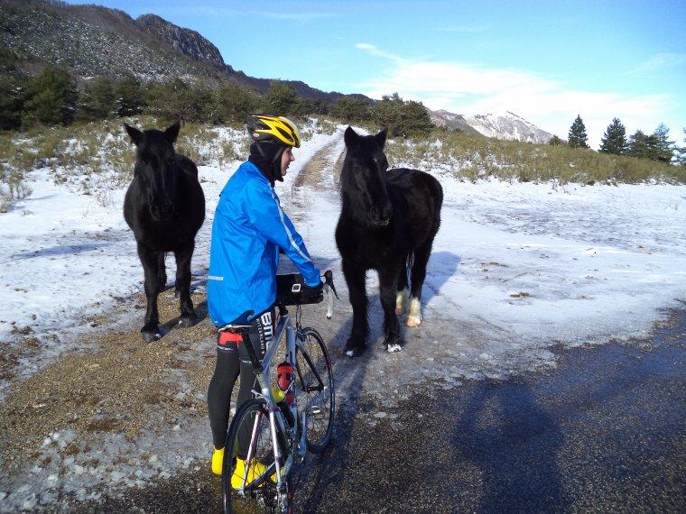 Tour de vélo vallée de la Roanne (3)