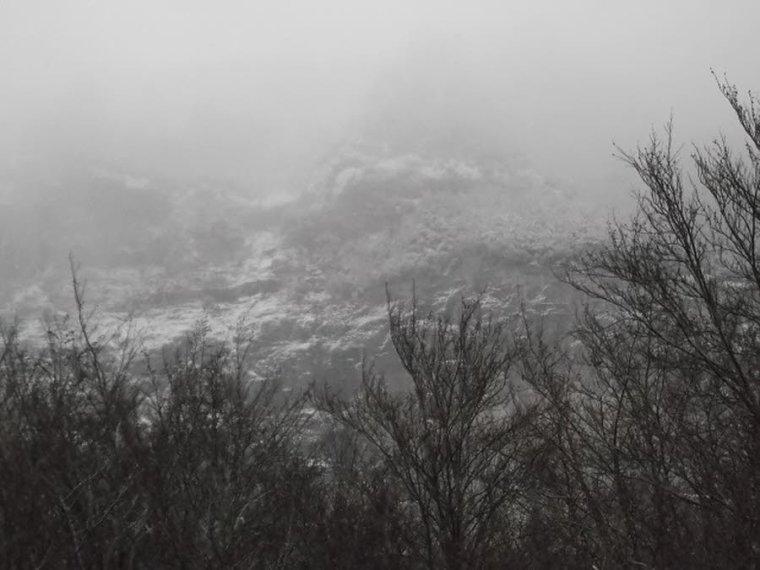 Nouvelles photos du Mt Serein