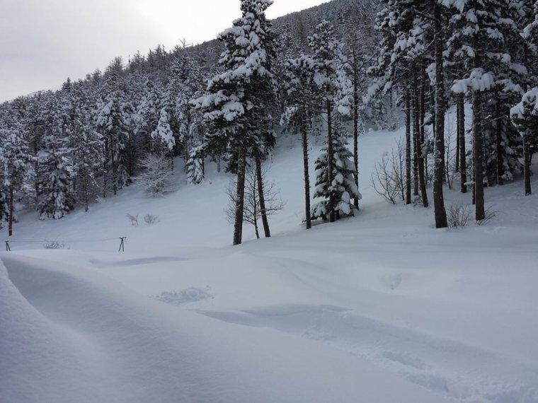 Nouvelle photos du Mont Serein