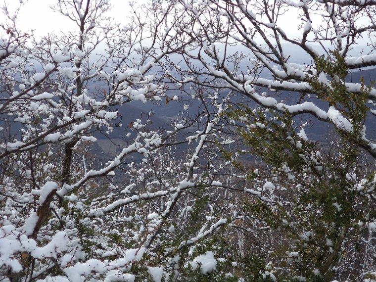 Photos randonnée à la ferme de la Lance avec 60cm de neige !  (2)